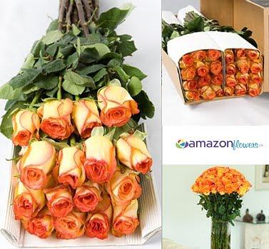 Bulk Orange Roses