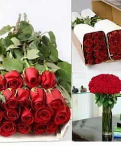 Bulk Red Roses 1