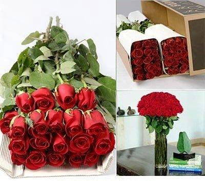 Bulk Red Roses 4