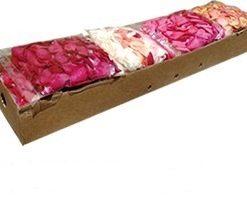 Bulk Roses Petals 1 1