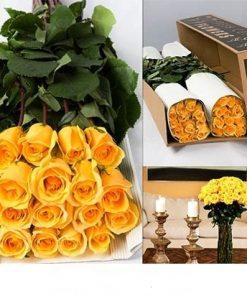 Bulk Yellow Roses 1