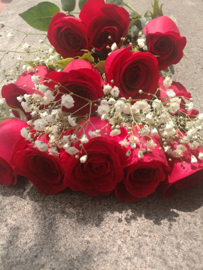 Red Roses BQT e1517596804551