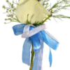 Boutonniere Indian