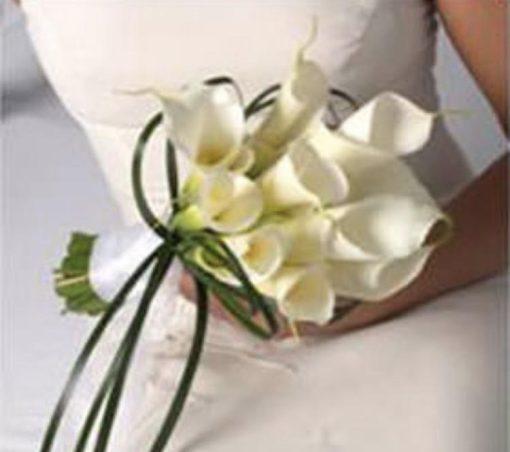 Bridal Nasim